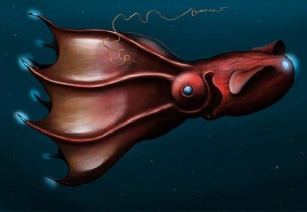 Dez fatos misteriosos do fundo do mar, imagem de Lula vampiro do inferno