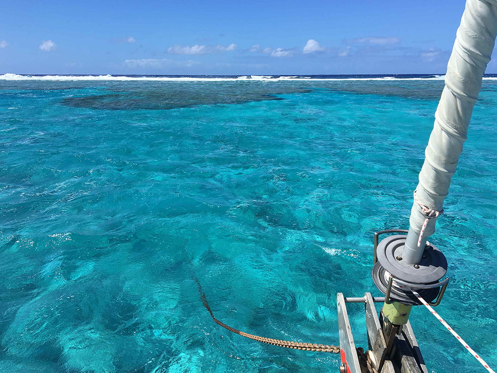 Viagem da Kika, diário de bordo Nº 7, imagem de Beveridge Reef