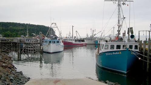 Marés, imagem de porto na maré alta