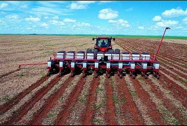Agricultura lidera preservação no Brasil, imagem de agricultura