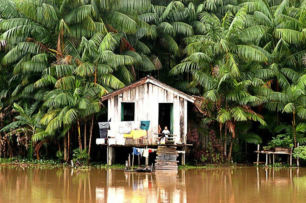 Litoral de Macapá até Belém, imagem de casa no furo dos macacos, amazonia
