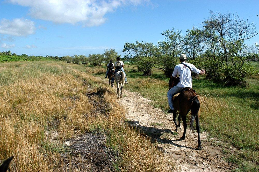 Litoral Sul do Maranhão, imagem da ilha do Cajú