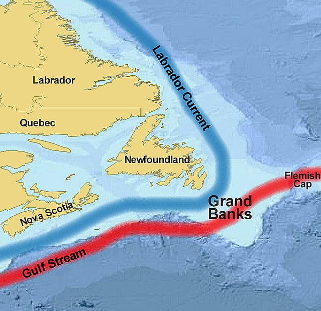 bacalhau, imagem de mapa dos grandes bancos de bacalhau