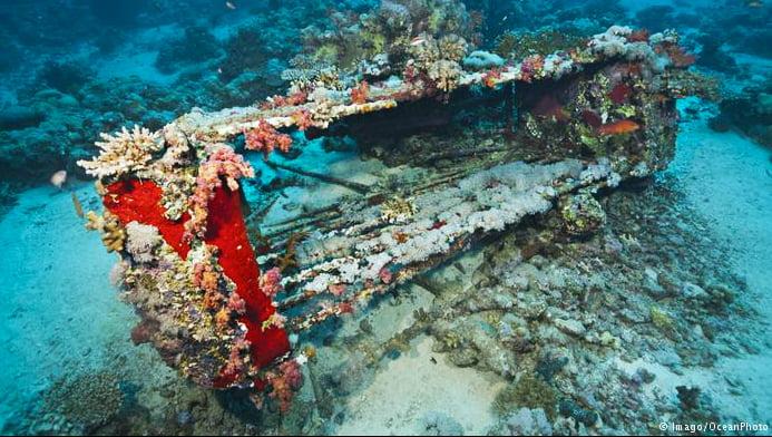 imagem de invenção de jacques cousteau, gaiola de proteção a tubarões