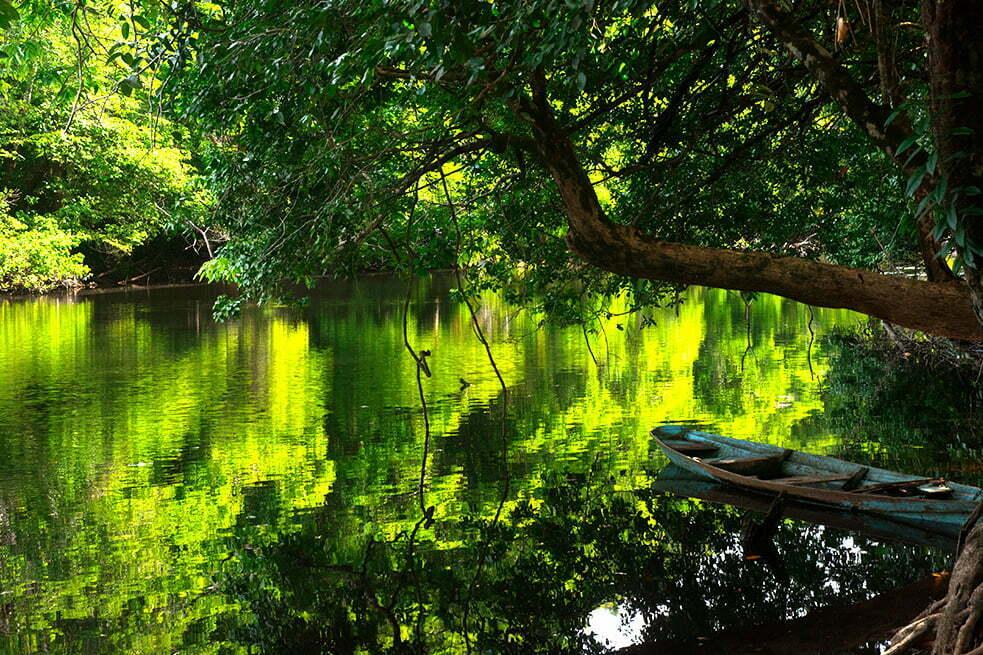 Governos querem gestão privada para parques, imagem de rio no parque nacional do cabo orange