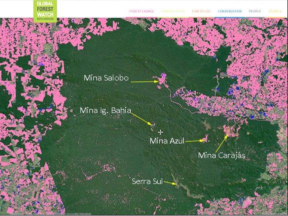 imagem de mapa do World Resources Institute mostra que a polêmica quem destrói a Amazônia está errada