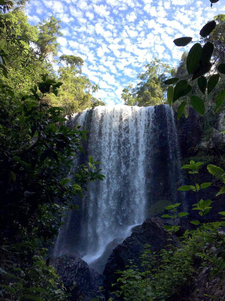 imagem de Milla Milla Falls, Tablelands da Viagem da Kika, diário de bordo Nº 8