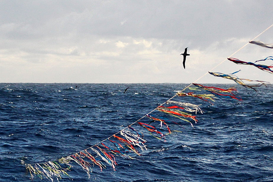 imagem do toriline desenvolvido pelo projeto albatroz para evitar pesca incidental de aves