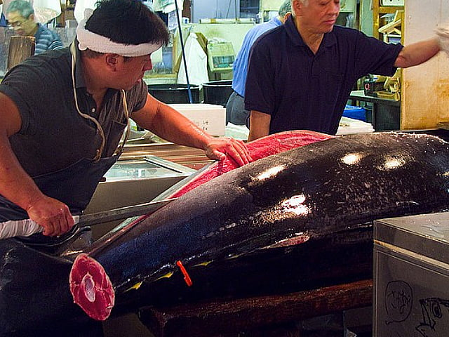 imagem do marcado de peixes de Tóquio