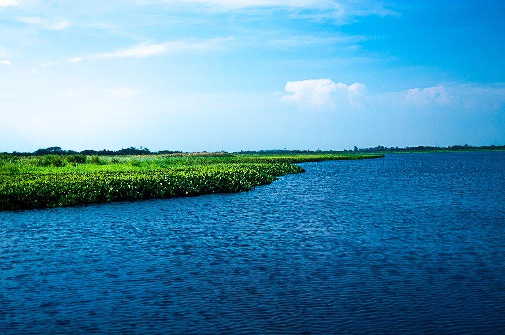 imagem do delta do Jacuí