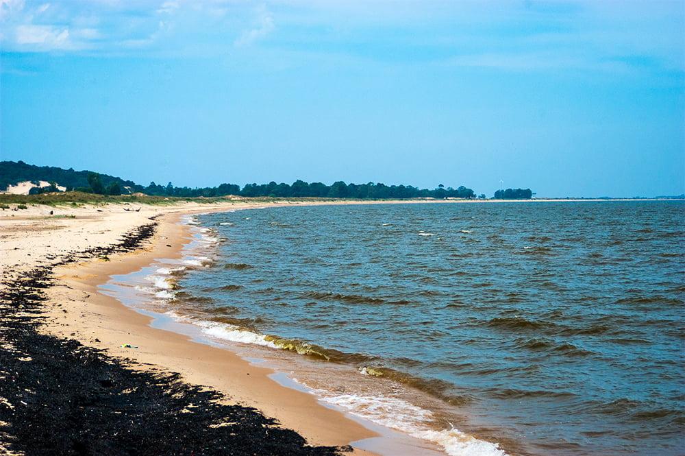 imagem de praia do guaíba com mexilhão- dourado