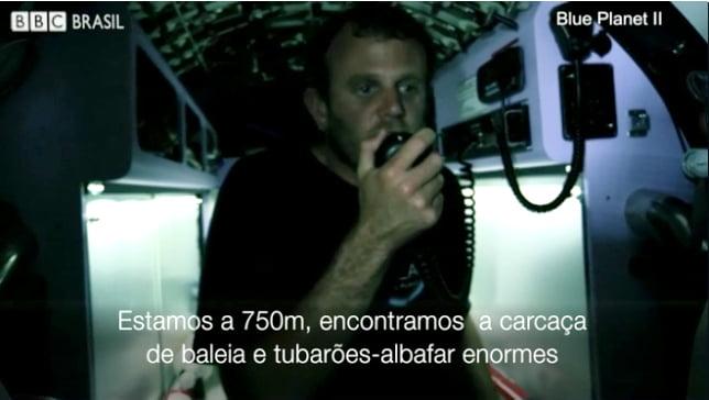 imagem de interior de submarino atacado por Tubarões, predadores do topo da cadeia