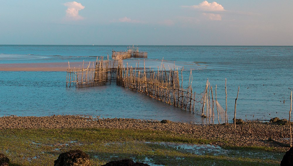 imagem de curral armadilha usada na pesca artesanal ilustra matéria Volume de pesca no mundo