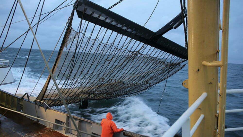 imagem de rede de pesca elétrica