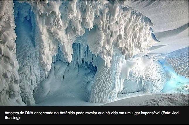 imagem de caverna na Antártica para o post Plantas e animais na Antártica