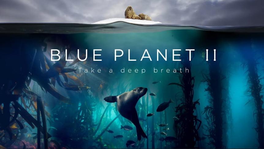 imagem de vida marinha do documentário, Blue Planet II