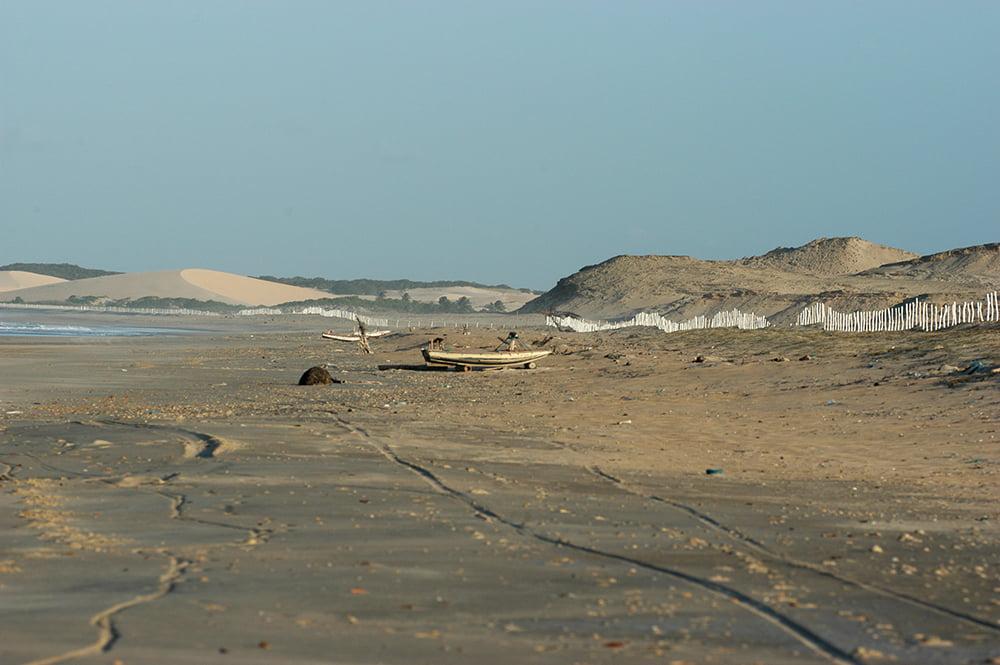 imagem de dunas cercadas no Litoral do Ceará