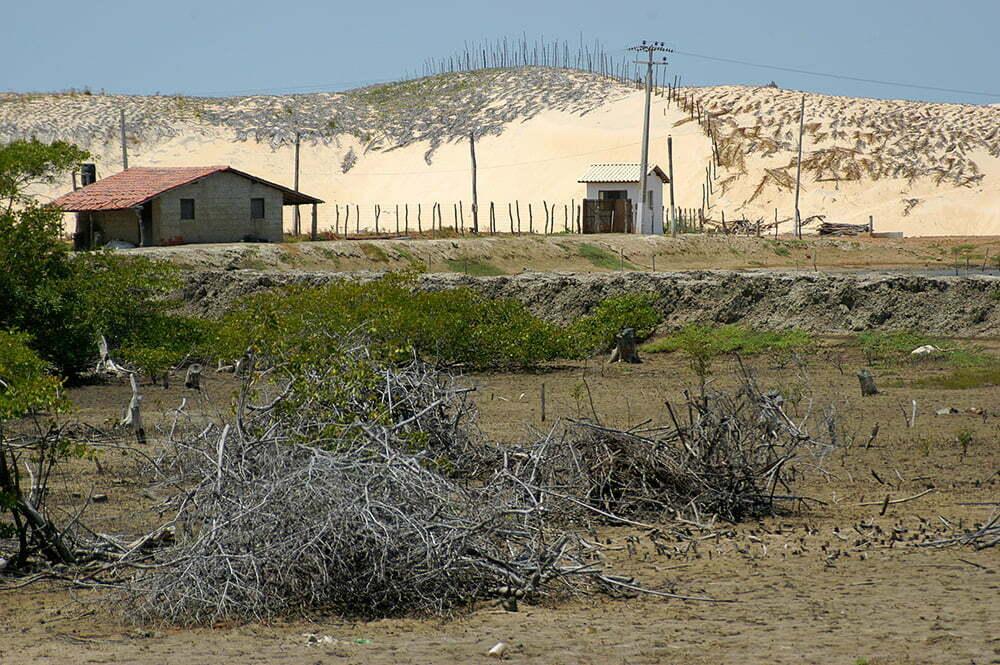 imagem de dunas cobertas de palha no Litoral do Ceará