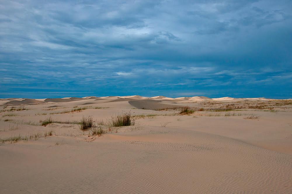 imagem de dunas no parque nacional da lagoa do peixe