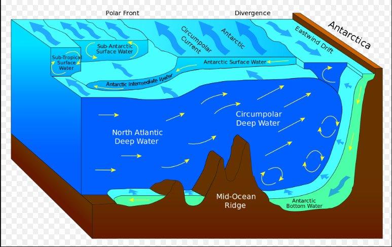 ilustração da Ressurgência na Antártica
