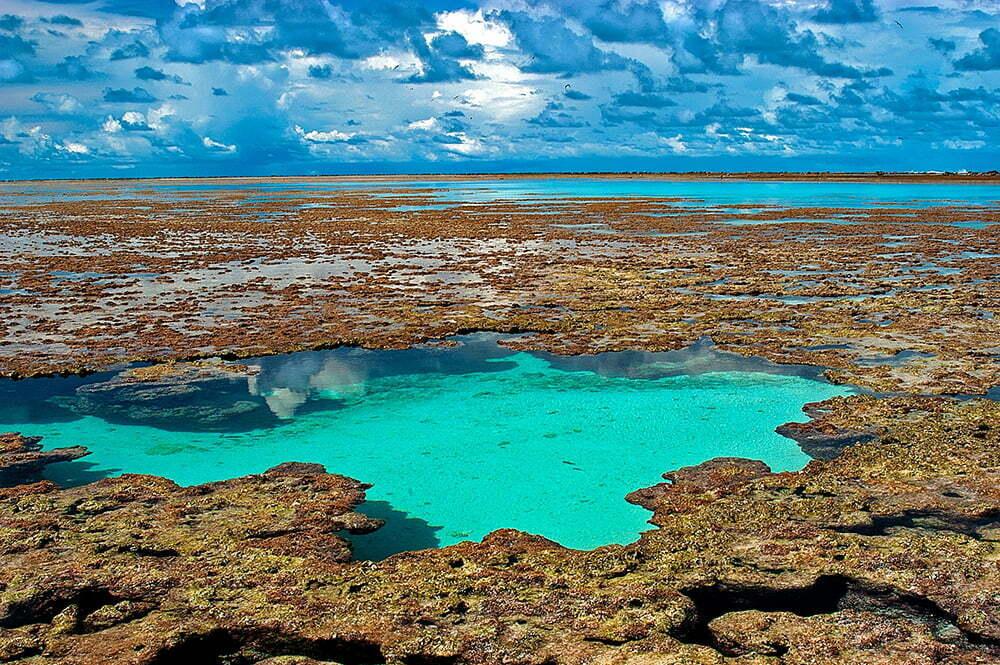 imagem de piscinas cercadas por corais no atol das Rocas