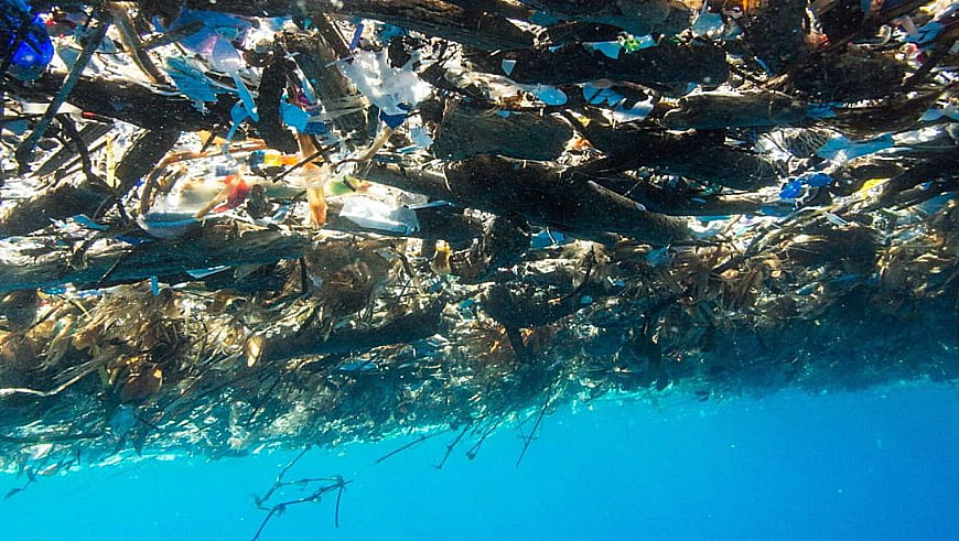 imagem do mar de lixo do Caribe