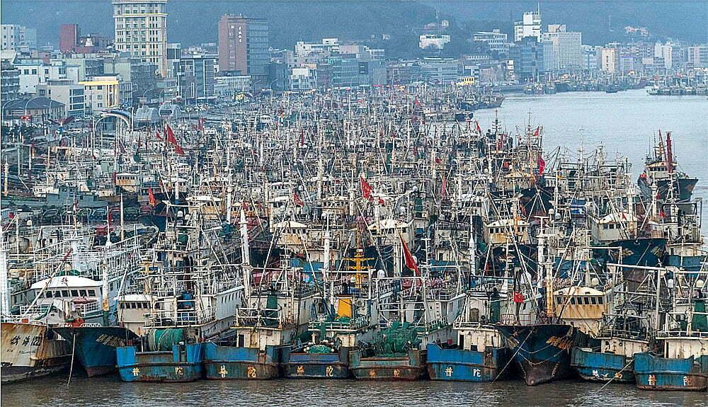 imagem de frota de pesca chinesa