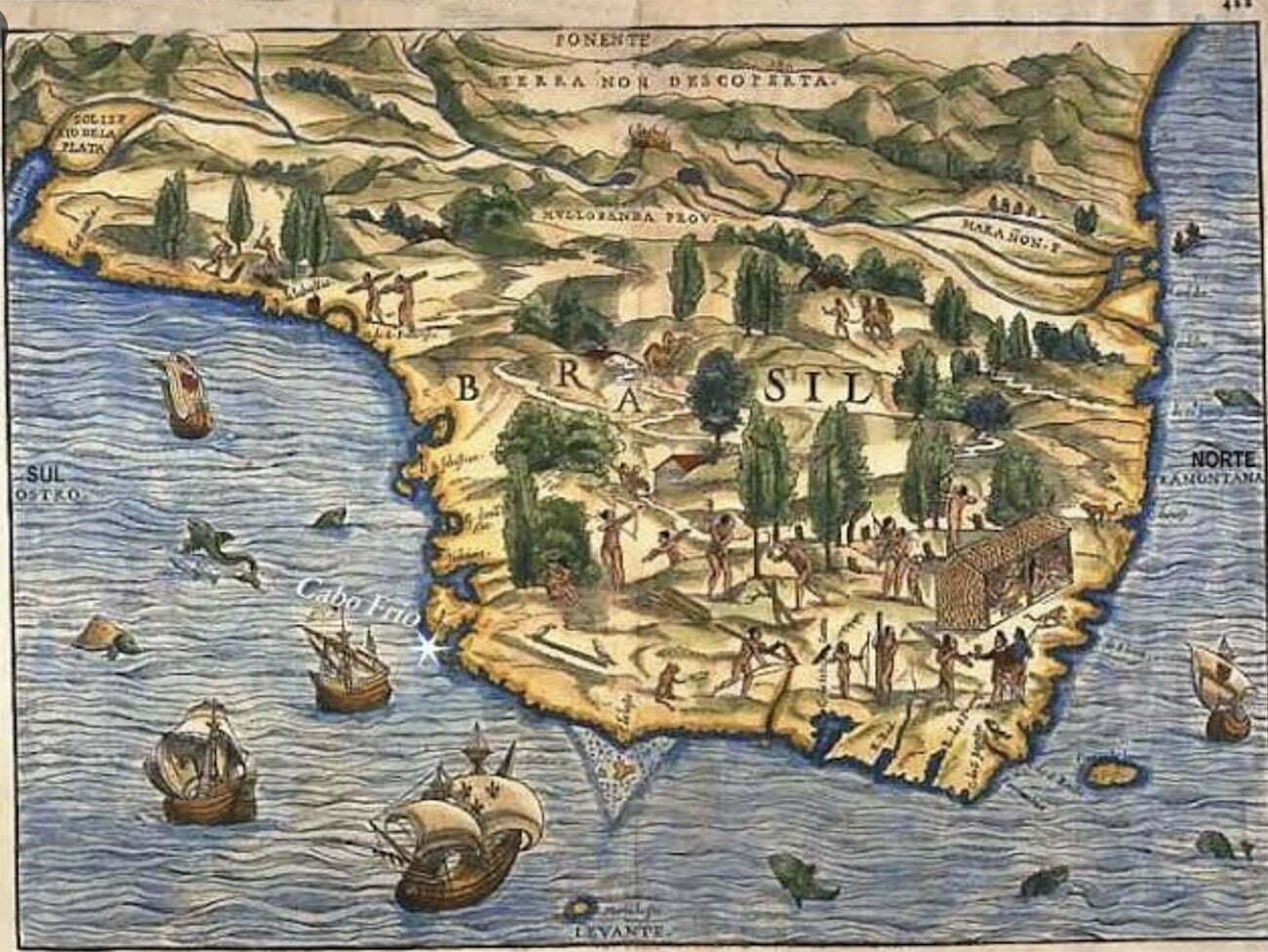 imagem de mapa do Brasil de 1556
