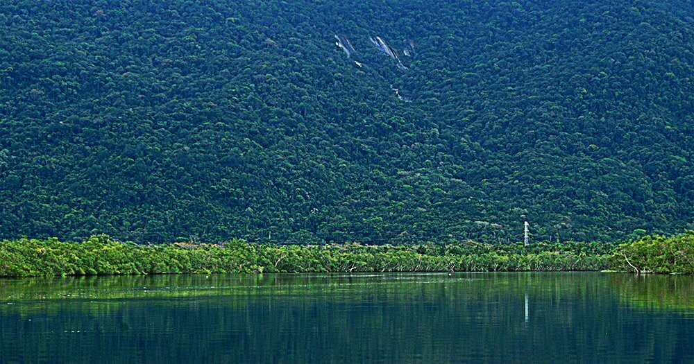 imgem do rio Itapanhaú