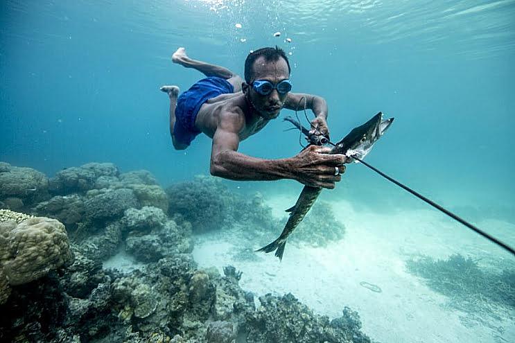 imagem de povo bajau mergulhadores