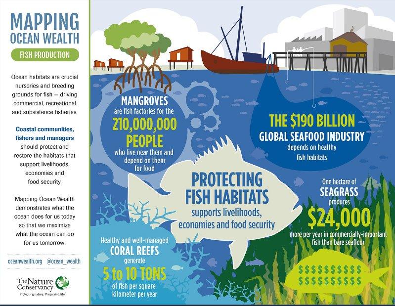 Ilustração da dependência humana de ecossistema marinhos dos Oceanos, serviços e importância
