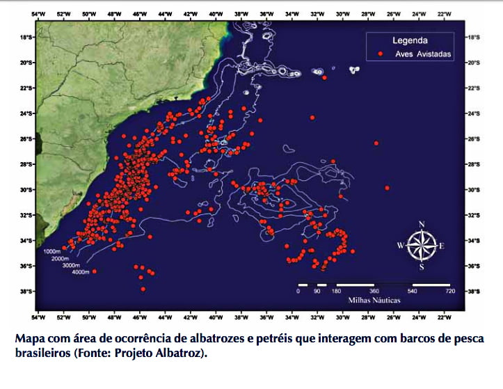 mapa mostra interação de aves marinhas com a pesca no Brasil