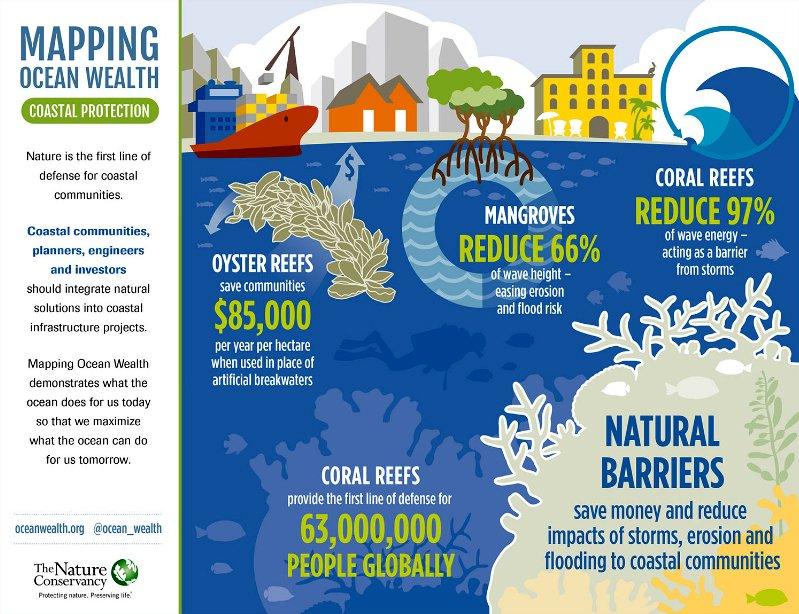 ilustração a defesa da costa por ecossistema marinho dos Oceanos, serviços e importância