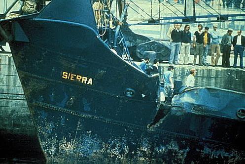 imagem do navio pirata Sierra abalroado peloSea Shepherd