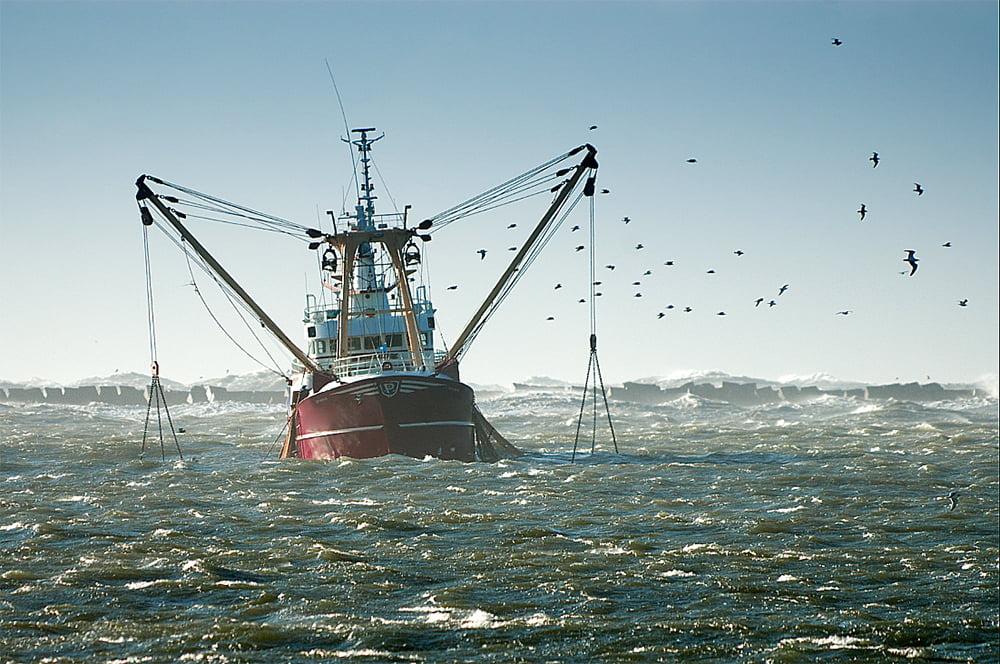 imagem da pesca industrial