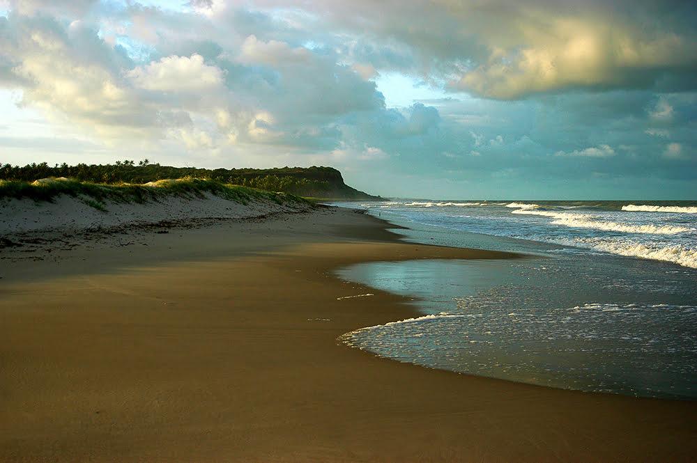 imagem da praia do Miriri, litoral da Paraíba