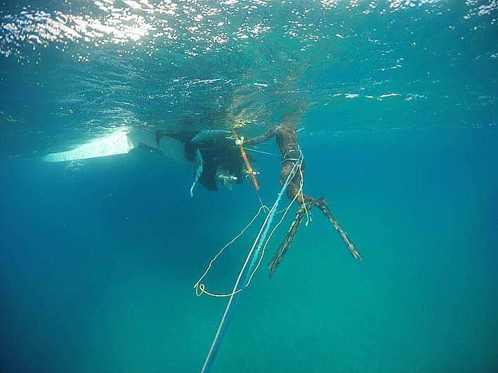 imagem submarina de caçadores submarinos