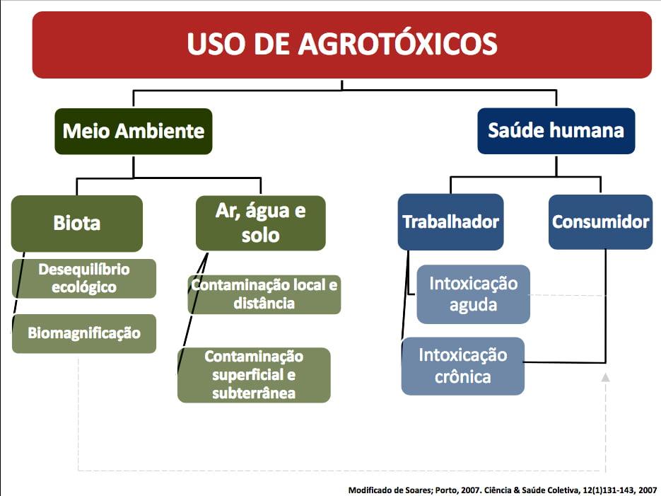tabela sobre problemas de agorotóxicos e meio ambiente e saúde humana