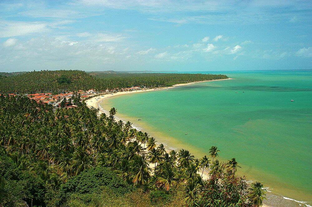 imagem do litoral de Alagoas do diário de bordo Litorais de Alagoas e Sergipe