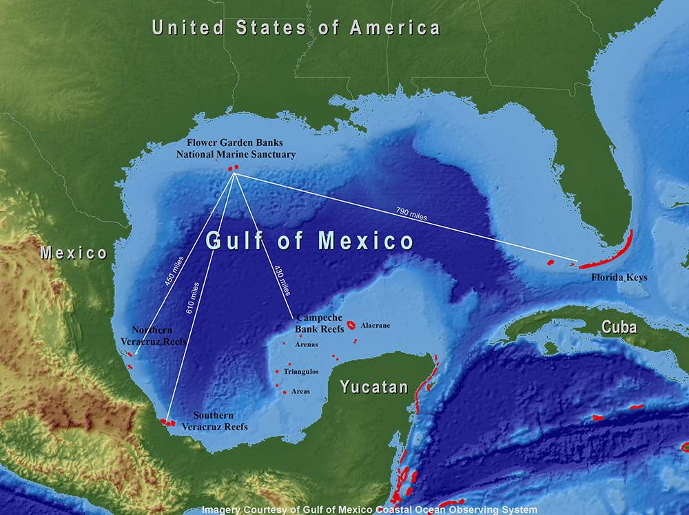 mapa do Golfo do México e berçário de raias manta
