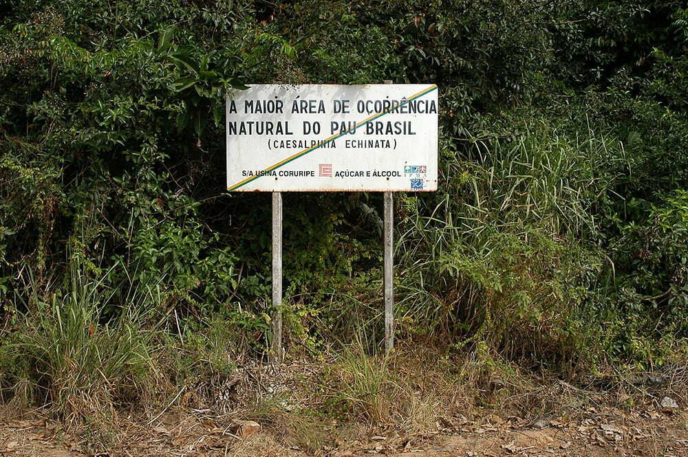 imagem de placa de reserva de pau- brasil em coruripe