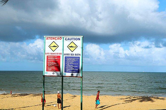 imagem de placa em praia alertando sobre tubarões no Recife