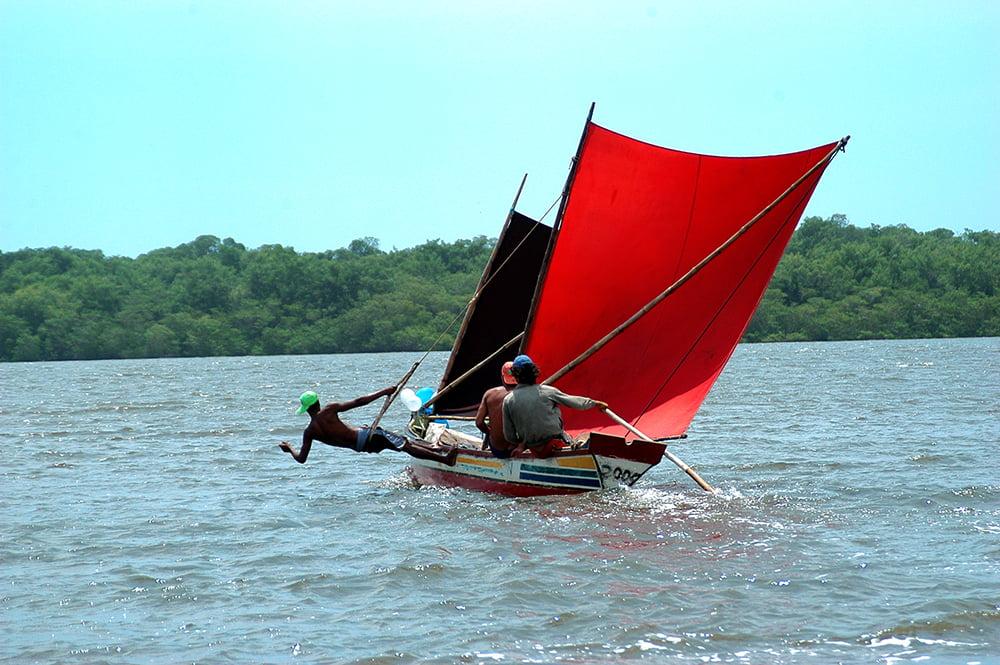 imagem de canoa sergipana com duas velas do diário de bordo Litorais de Alagoas e Sergipe