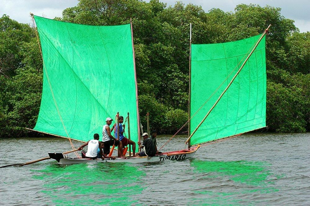 imagem de canoas borboletas no rio Real Jaci Rosa dos Santos