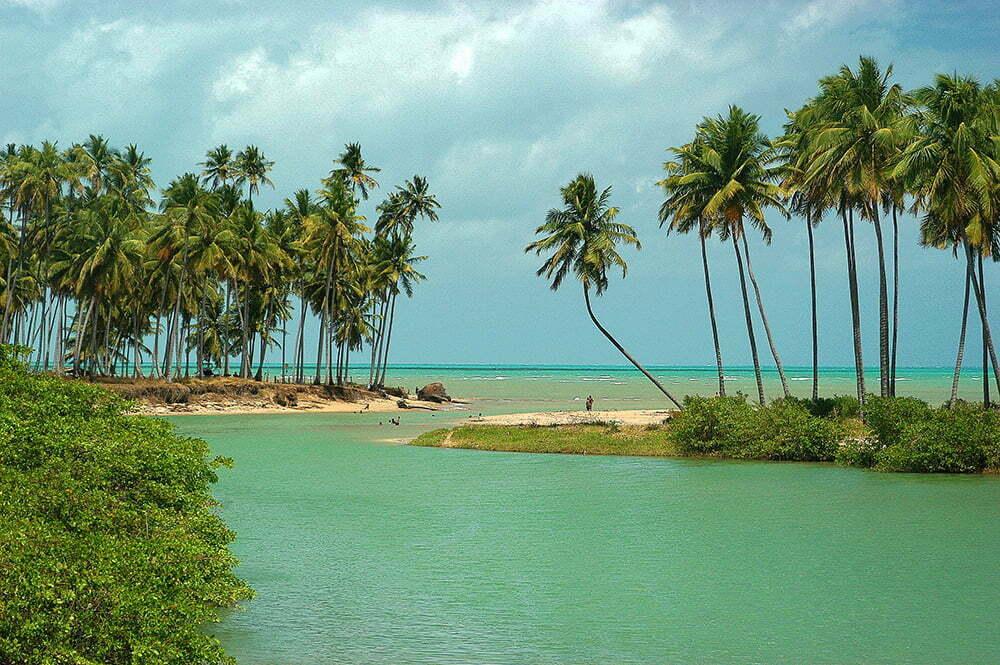 imagem de paisagem do litoral de Alagoas do diário de bordo Litorais de Alagoas e Sergipe