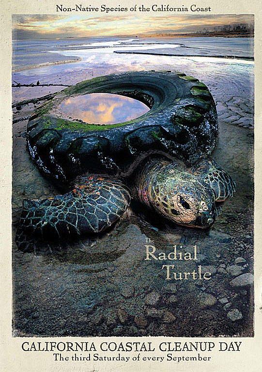 imagem de anúncio de tartaruga morta por plástico