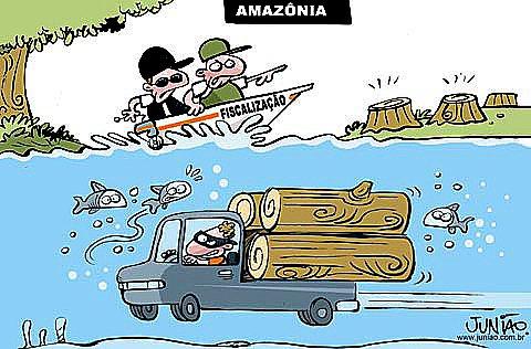 charge sobre desmatamento na amazônia