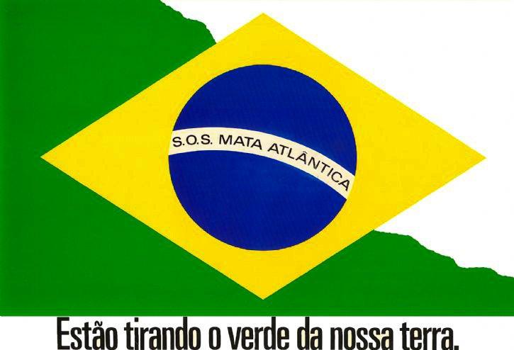 imagem do logotipo da ong sos mata atlântica feita por Publicitários brasileiros