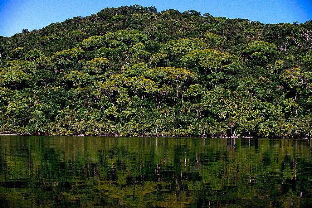 imagem do Parque Nacional do Superagui