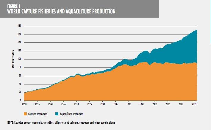 Imagem de gráfico com quantidade mundial da pesca
